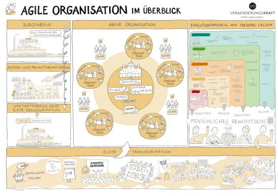 Agile-Organisation-Illustration